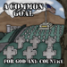 A Common Goal - For God And Country - 2012